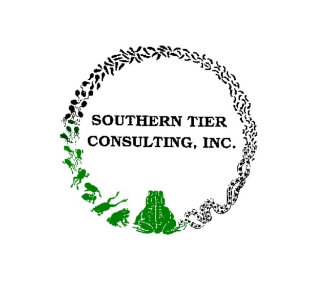 southern tier consulting